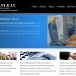 Accountants Web Design